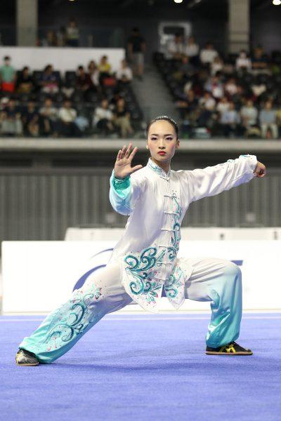 04_13_第35回全日本武術選手権大会